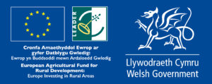 European Agricultural Fund and Rural Development Logo