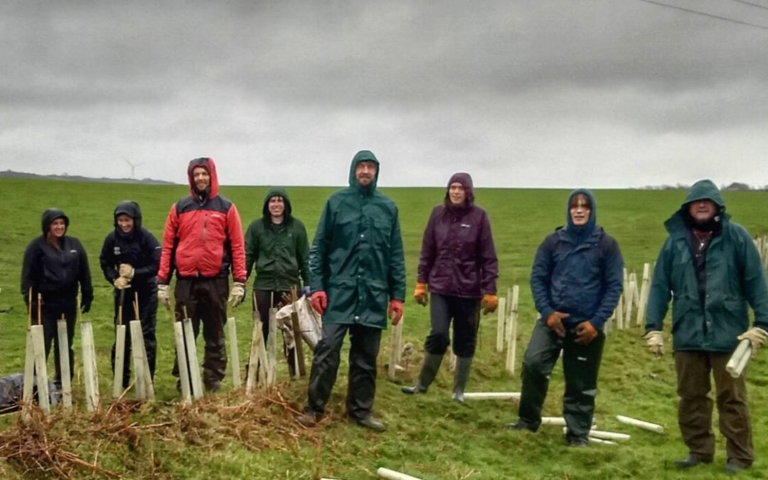 It only takes 11 students to plant 1000 trees